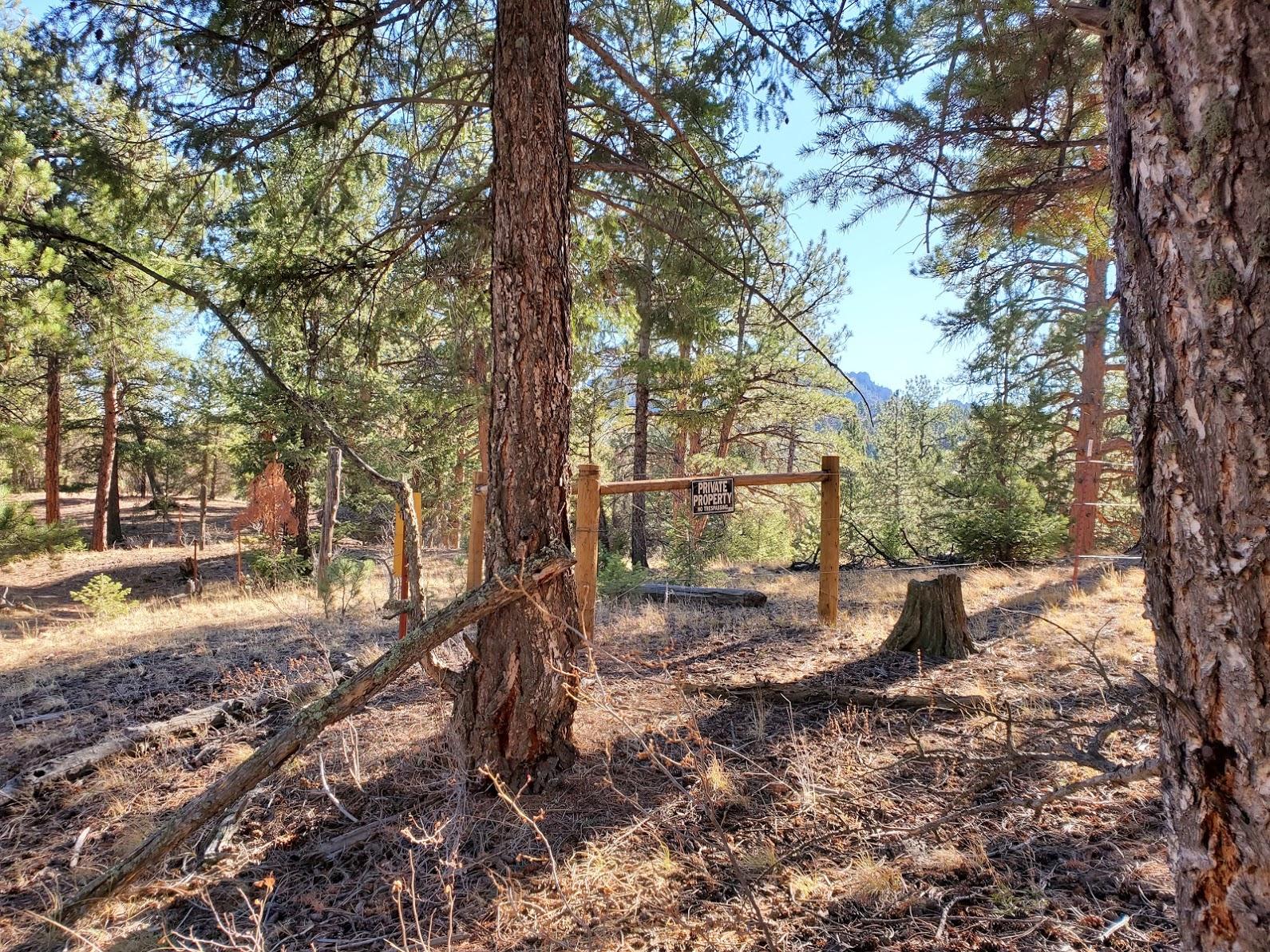 Long Scraggy Ranch property